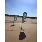 Base Expo Sand